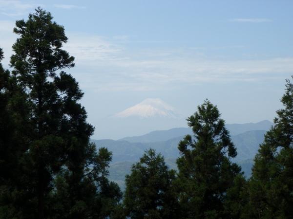 富士見台から