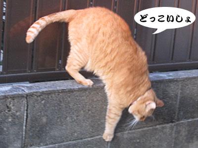 13_11_16_5.jpg