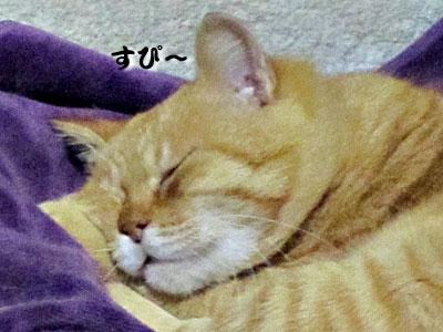 13_11_22_5.jpg