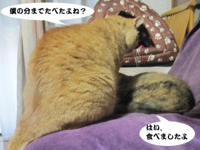 13_11_26_2.jpg