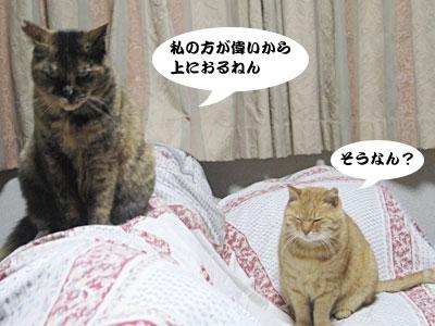 13_12_02_4.jpg