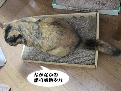13_12_24_1.jpg