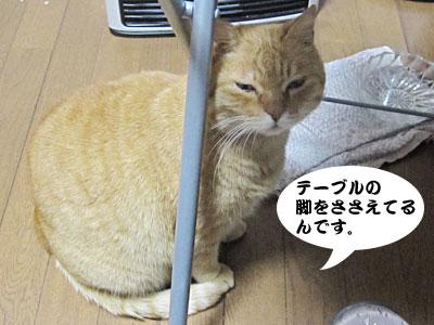 13_12_26_3.jpg