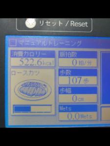 20110309101634.jpg
