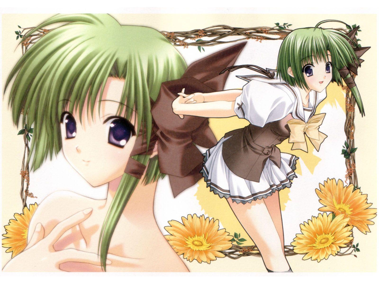 Konachan.com - 39904 shigure_asa shuffle