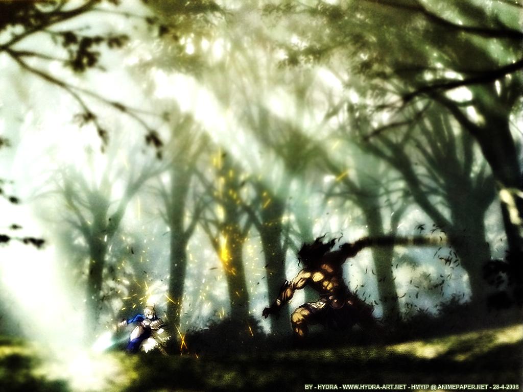 Minitokyo_Fate-Stay_Night_Wallpapers_242758.jpg