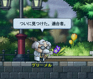 MapleStory_2013_0717_223707_346.png