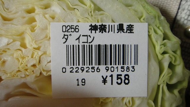 DSC02046.jpg