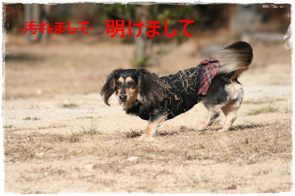 走り始め2