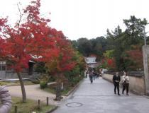 IMG_3460_convert_20121111105613.jpg