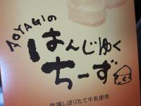 20100404kouchi_8.jpg