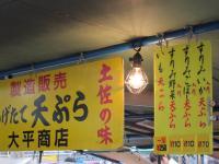 20100404kouchi__3.jpg