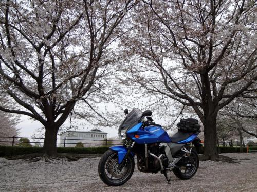 moto120405.jpg