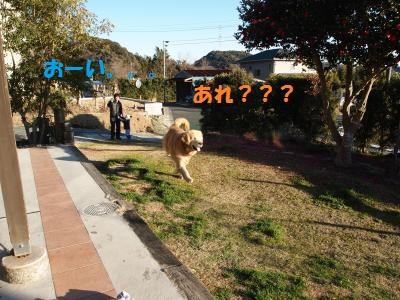 P1275857_convert_20130209202802.jpg