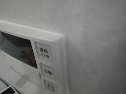 IMGP3895.jpg