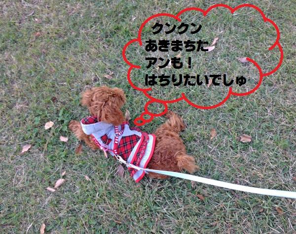2014101910152544c.jpg