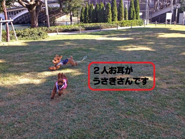 20141025080342356.jpg