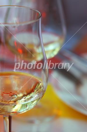 2788110 ワイングラス