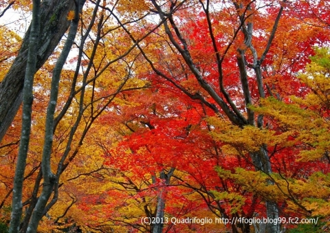 2012年 京都