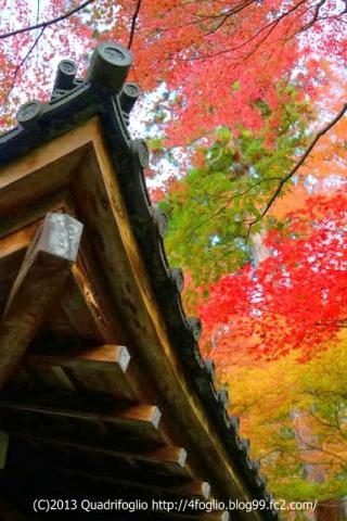 2013 秋・京都 その④