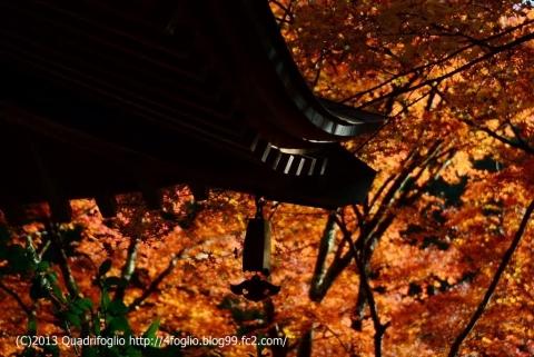 2013 秋・京都 その⑥
