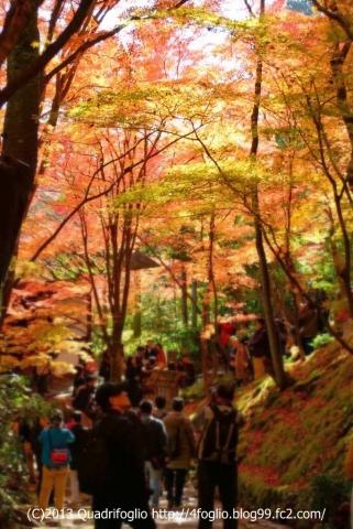 2013 秋・京都 その⑧