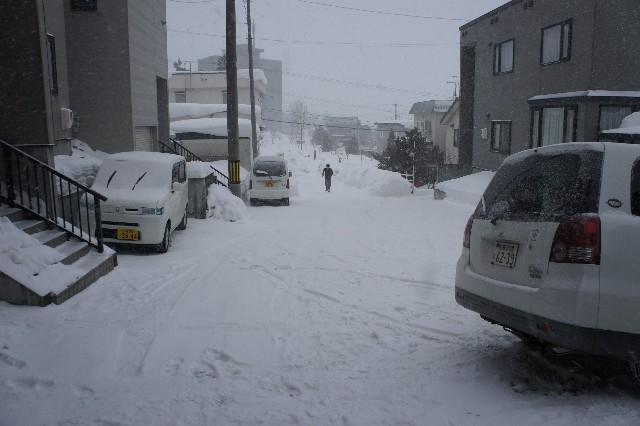 17_20110131023651.jpg