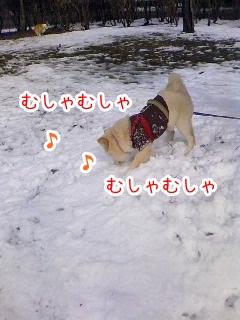 20130123_1.jpg