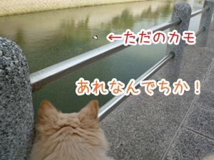 20130310_16.jpg