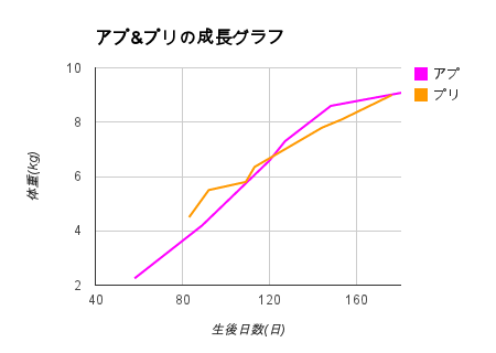 20130316_1.png