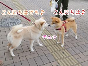 20130322_7.jpg