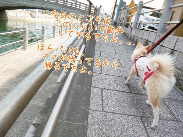 20130331_7.jpg
