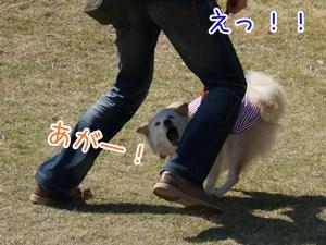 20130511_9.jpg