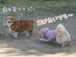 20130512_12.jpg