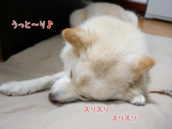 20130605_11.jpg