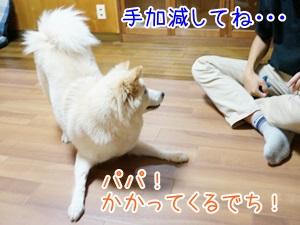 20130605_12.jpg