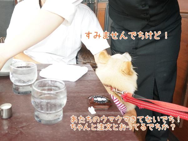 20130612_8.jpg
