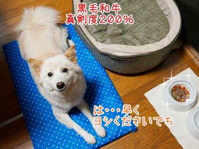 20130703_8.jpg