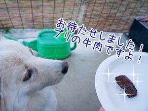 20130710_9.jpg