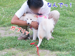 20130716_12.jpg