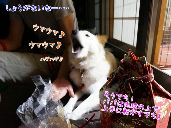 20130721_8.jpg