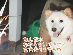 20130722_7.jpg