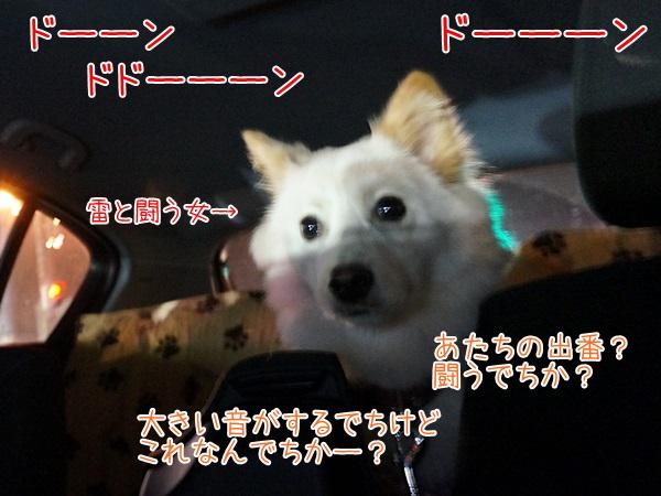 20130731_9.jpg