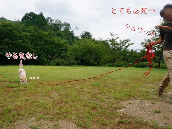 20130801_8.jpg