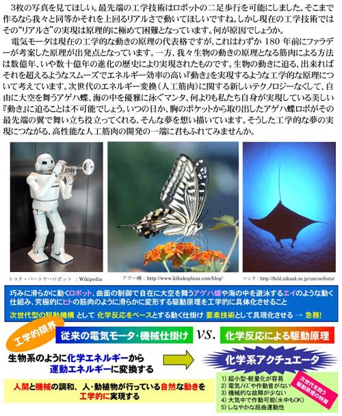 2010-3_2.jpg