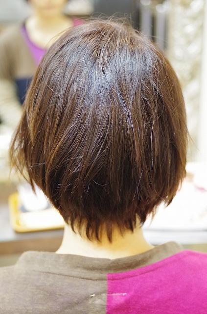 IMGP9548.jpg