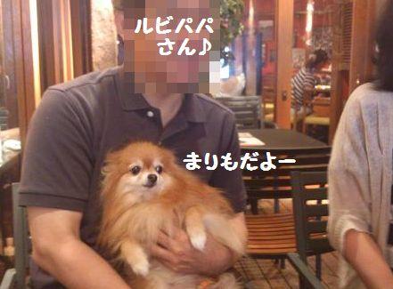 DSC_3777vv.jpg