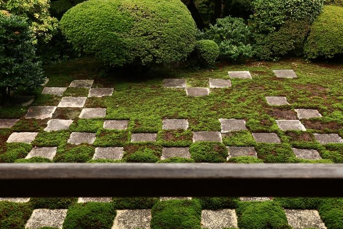 tofukuji1411_09.jpg