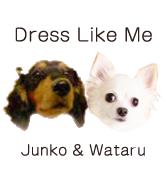 Dress Like Me(ドレスライクミー)