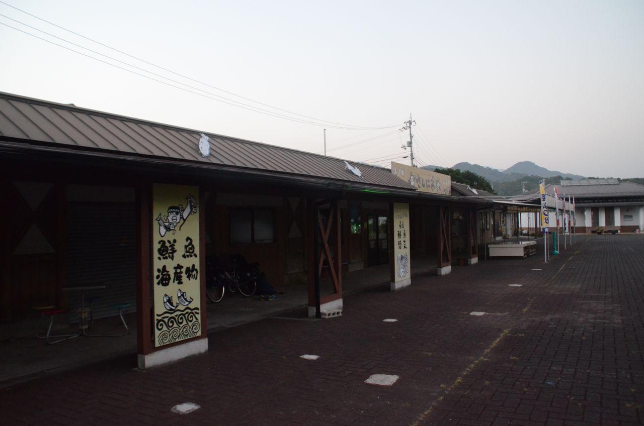 DSC_8615-2.jpg